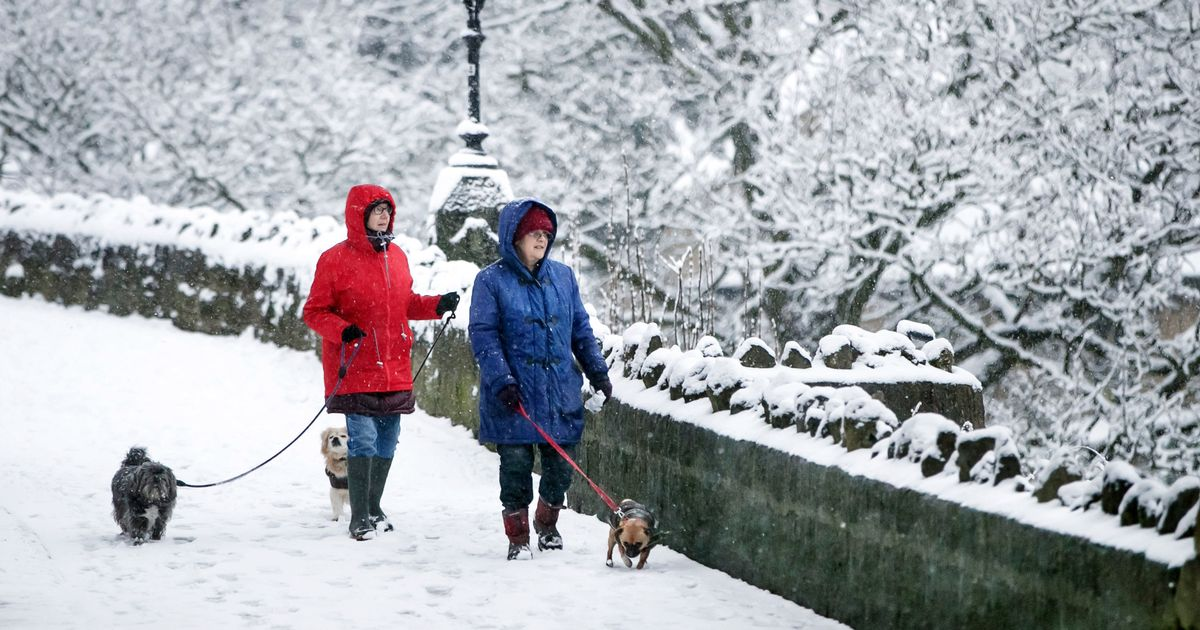 Amber weather warnings of snow issued for south-east England