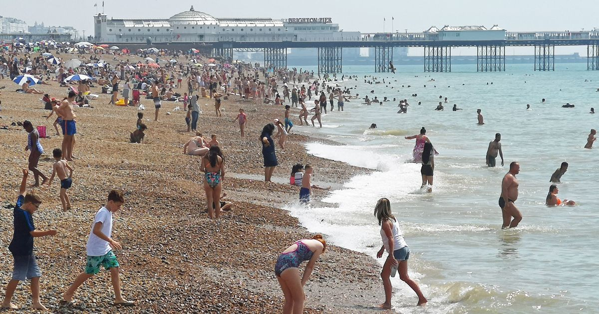 Beach trips could restart soon - but experts say no to holidays abroad