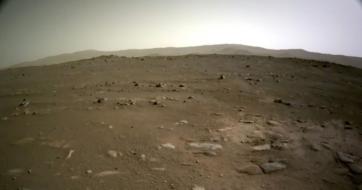 Extraordinary new Mars photo released as NASA shares footage of rover landing