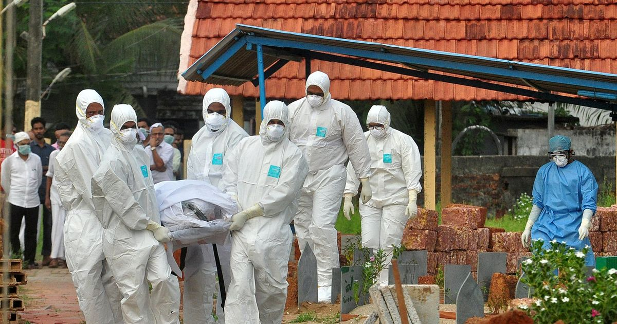 Fears brain-swelling Nipah virus with huge death rate 'may be next pandemic'