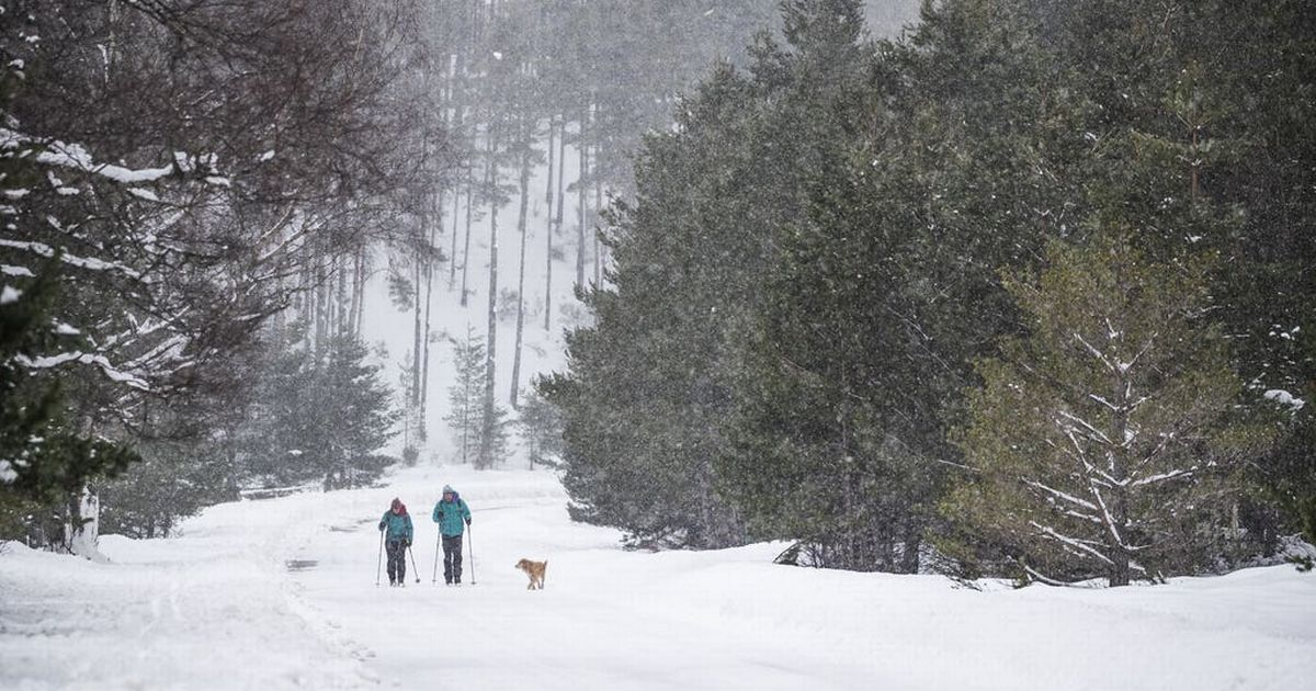 Heavy snow on way as Met Office  warns to expect disruption