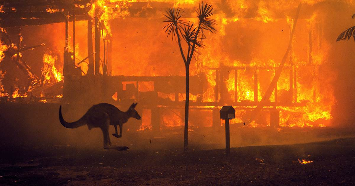 One year since Australia's devastating wildfires, anger grows at climate change 'inaction'
