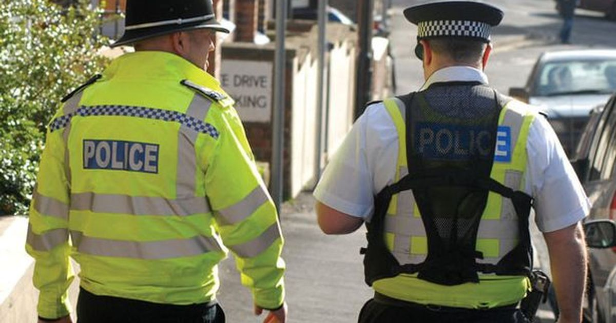 Police watchdog warning on 'unfair' use of powers against minority ethnic groups