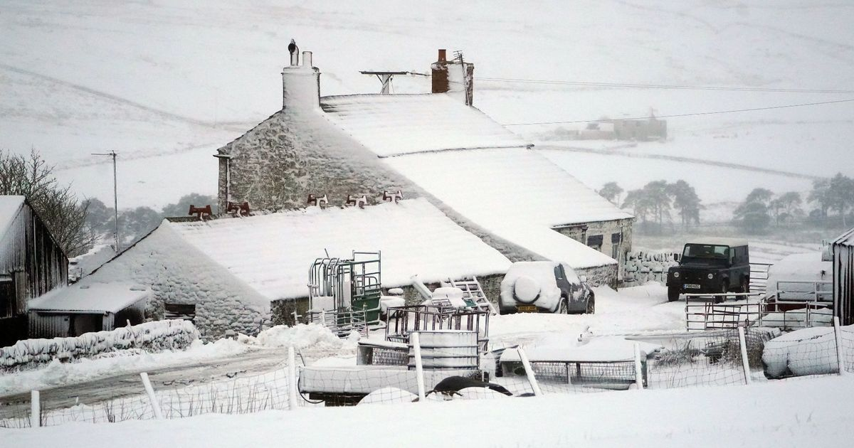 Storm Darcy on the way as south east of England braced for heavy snow