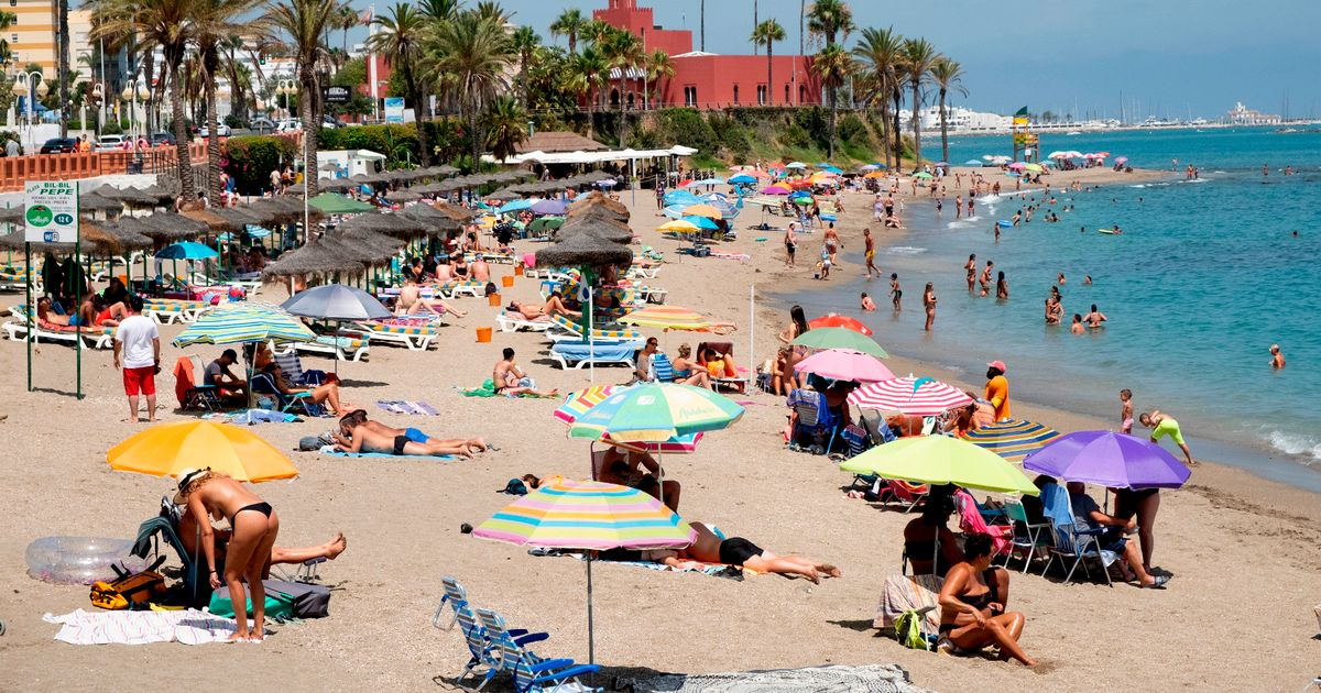 'Traffic light' system to allow Brits to go on holiday being considered