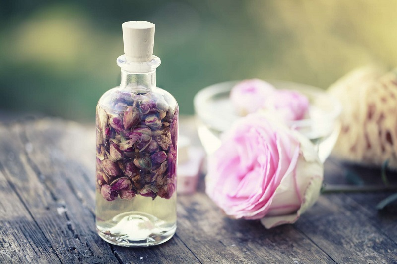Not Only Rose Leaves Oil Is Also Beneficial: Rose Oil Is Beneficial In Removing Stress, Skin Spots And Wounds, know Its Benefits