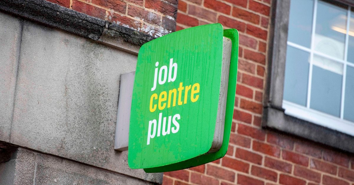 Job vacancies remain stable under latest lockdown restrictions - study