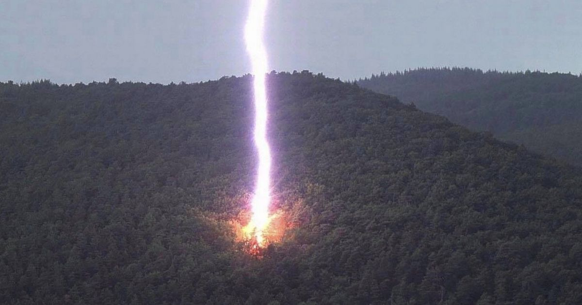Tree explodes 'into a million pieces' as it's struck by huge lightning bolt