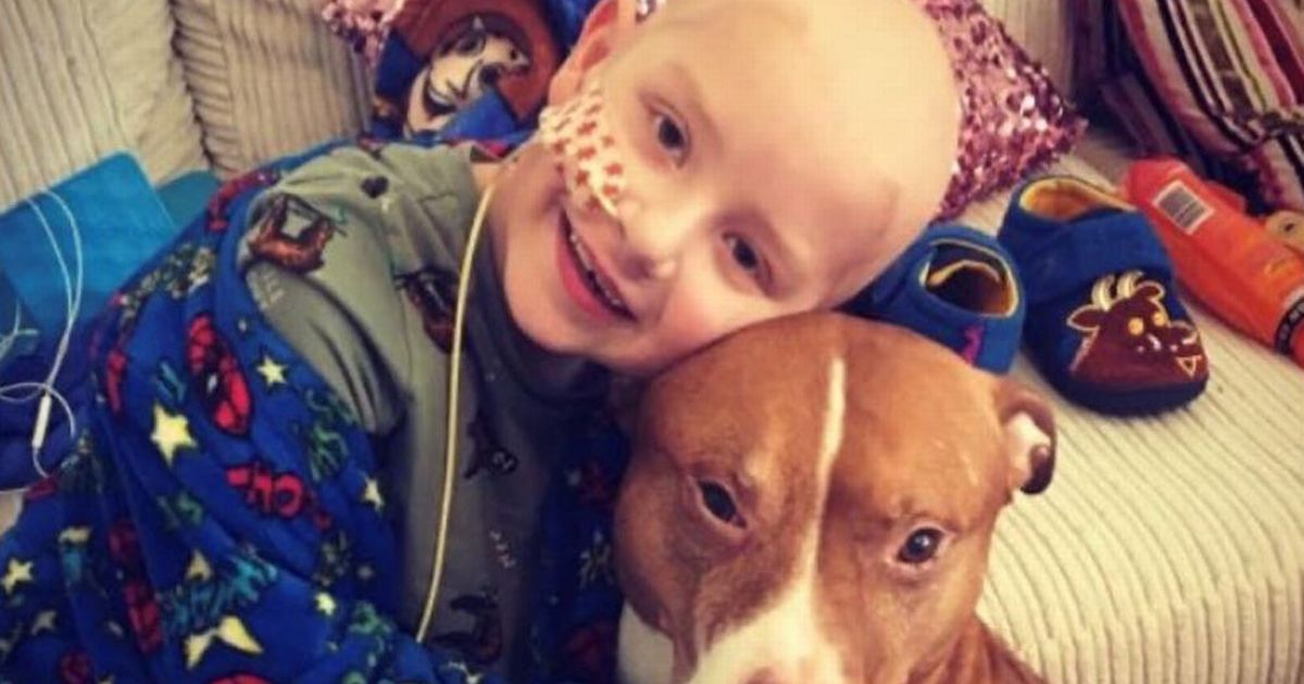 Brave boy wants to celebrate beating cancer by meeting Stormzy