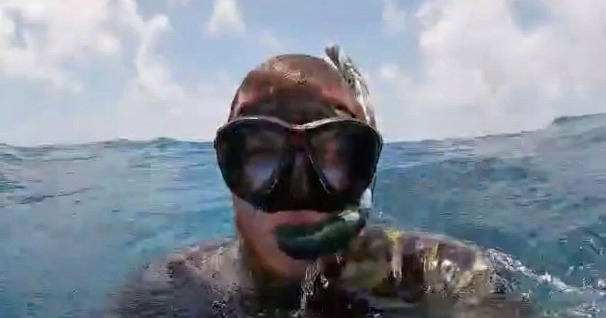 Diver stuck in shark-infested waters for three hours after boat capsizes