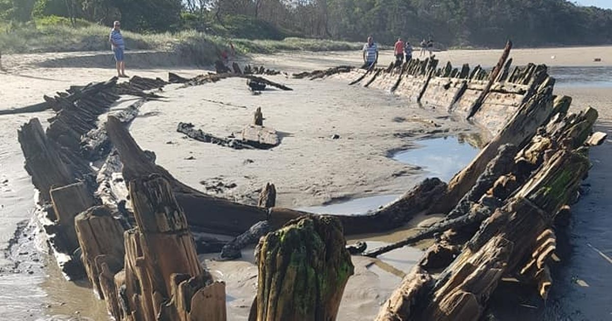 Fossilised 128-year-old shipwreck buried beneath sand exposed by stormy weather
