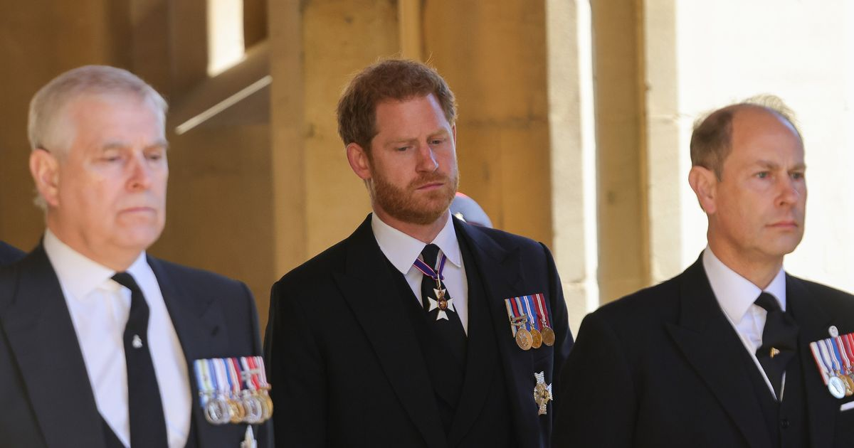 Prince Harry 'ignored' by Royals - but Prince Andrew shows him sympathy