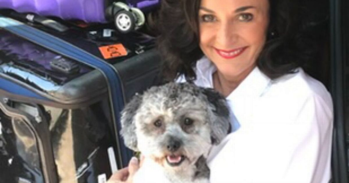 Strictly judge shares pet 'guilt' with pandemic puppy owners