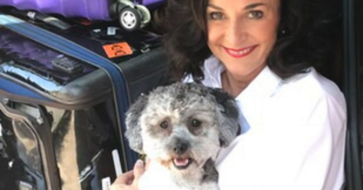 Strictly's Shirley shares pet 'guilt' with new dog owners