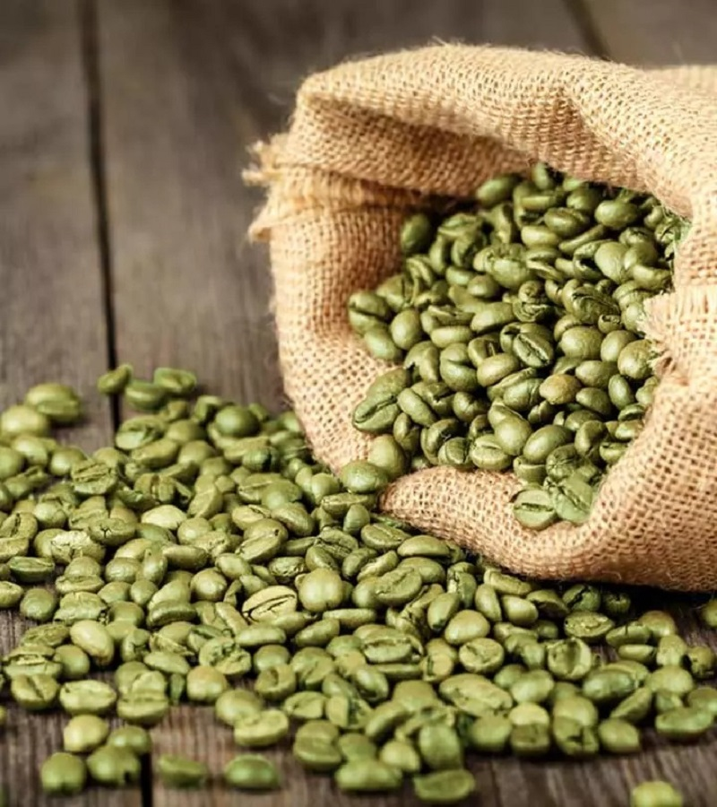 Use Of Green Coffee To Lose Weight
