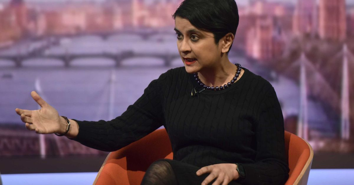 Vaccine passports are a 'tool of oppression' says Labour peer