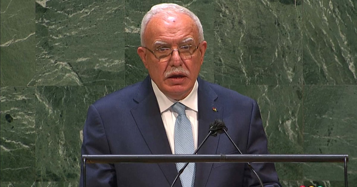 'Occupation is the root cause of the violence,' Palestinian minister tells U.N.