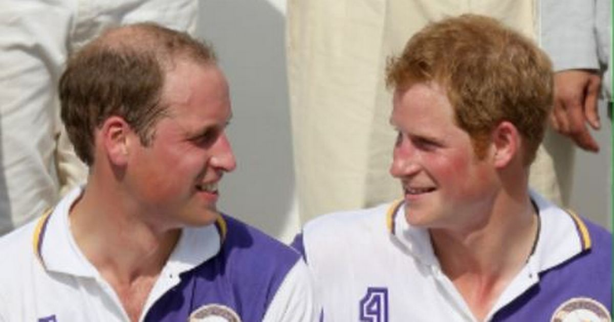 'Harry and Will's fallout began over wild party decoy ploy'