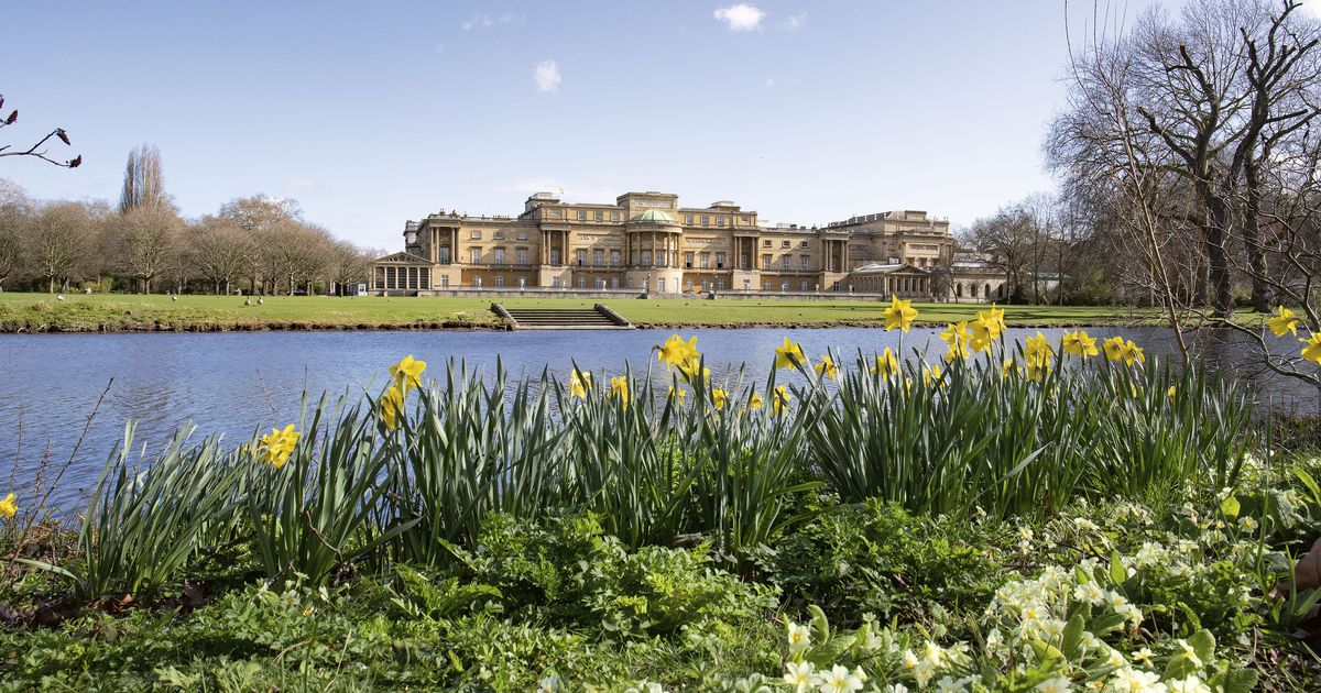 Public can picnic in Palace gardens for first time ever