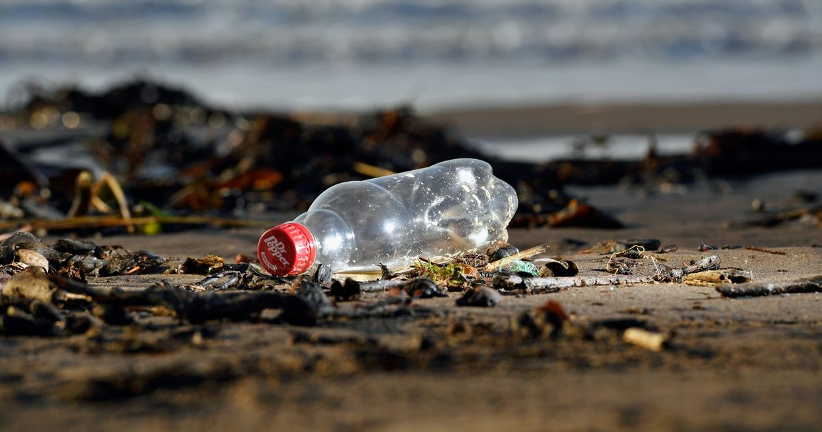 Sainsbury's to pack fish in plastic 'rescued' from  ocean
