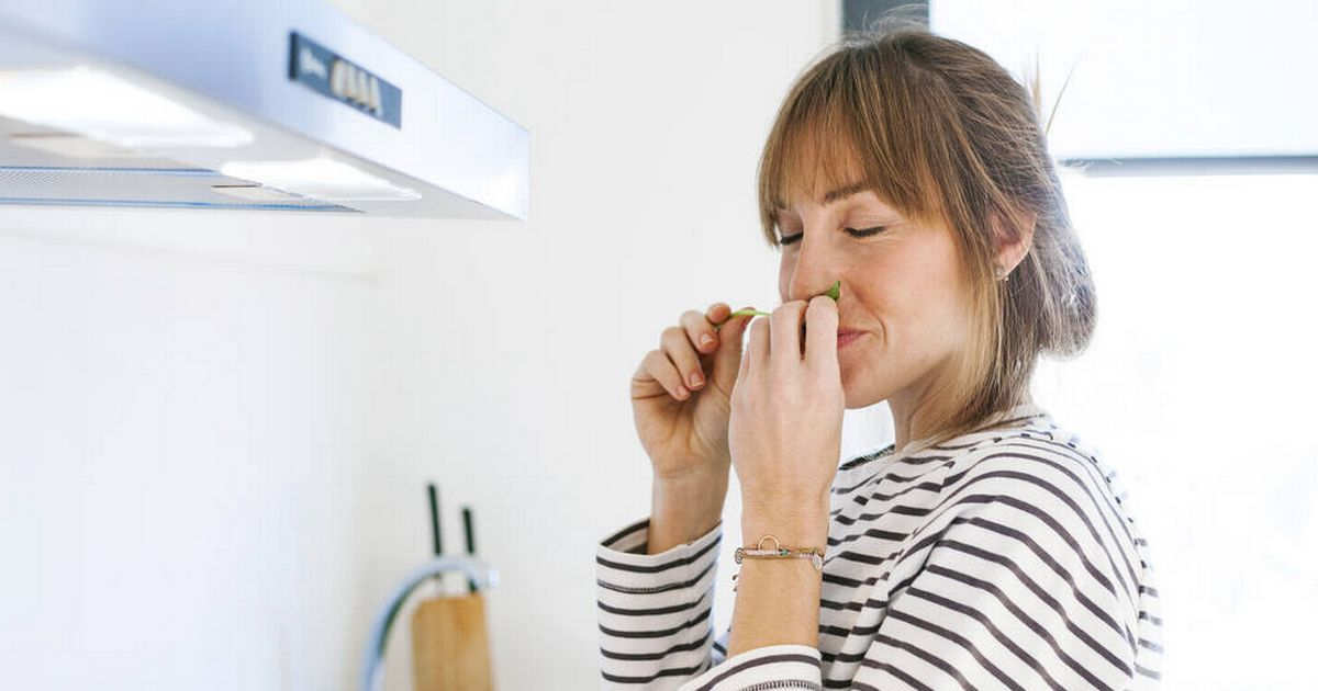 Three-quarters of Brits believe aroma can transform their mood