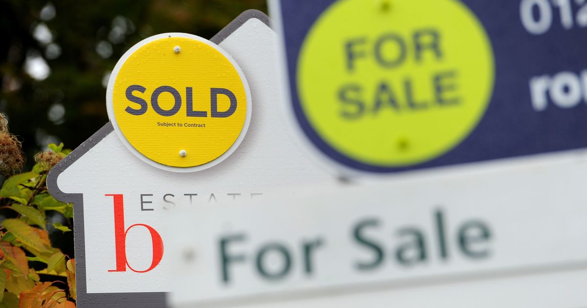 Truth about house market boom as 13 buyers battle for each home