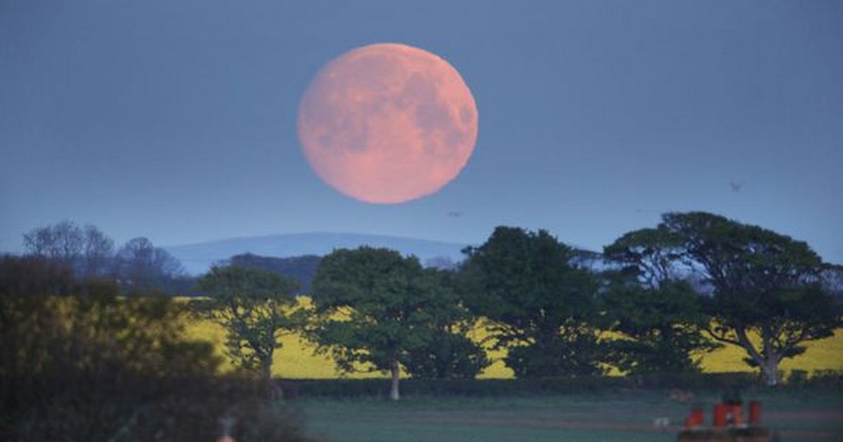When you can see the Blood Supermoon light up the sky