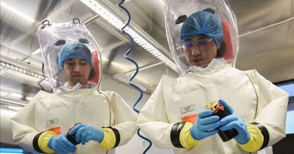 Wuhan lab workers 'fell ill weeks before Covid emerged' fuelling leak theory