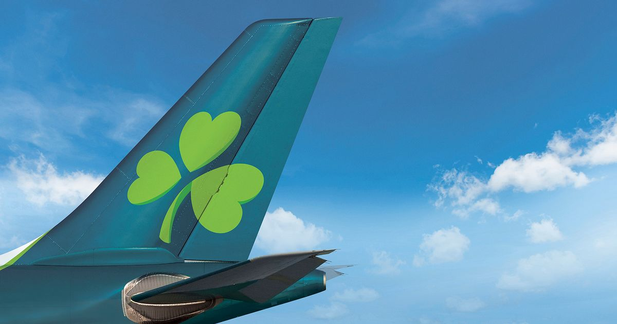 Aer Lingus to take on selected UK links hit by Stobart Air collapse