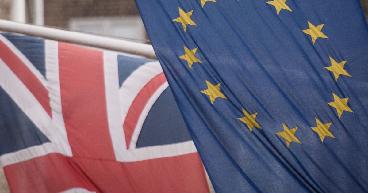 Huge backlog in applications for EU settlement scheme with many waiting months