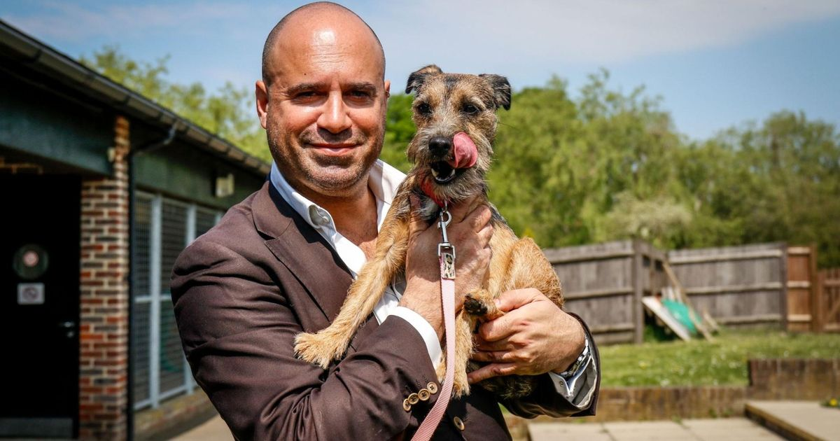 Lucy's Law vet who got Boris and Carrie their pet dog made OBE