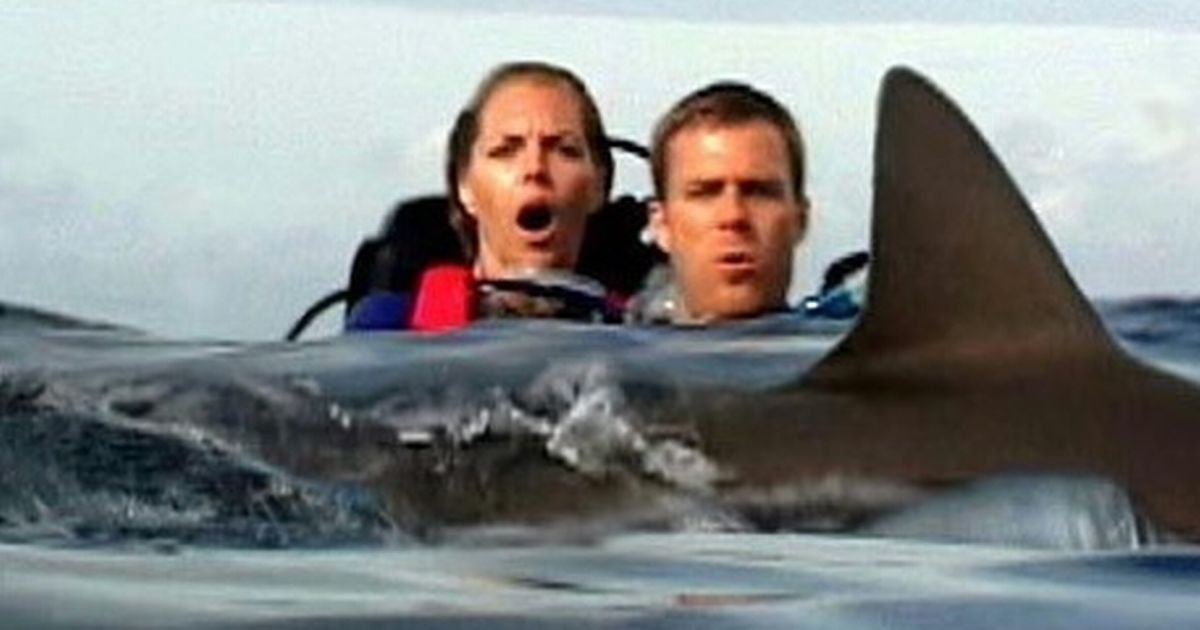 Mystery of couple left behind in shark-infested waters still missing 23 years on