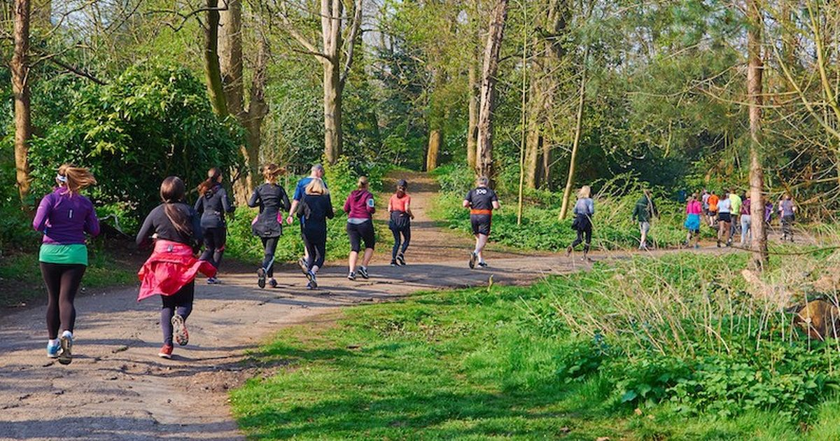 Plan to restart Parkrun events dashed by lockdown decision