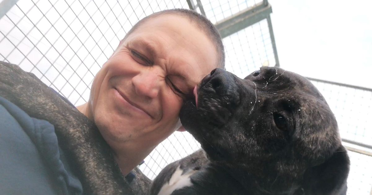 UK's 'loneliest dog' needs a new home after 775 days in rescue kennels