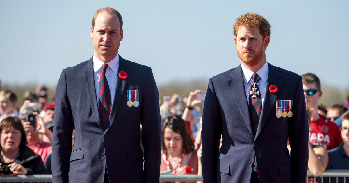 All eyes on Princes William and Harry as they unveil statue in Diana's memory