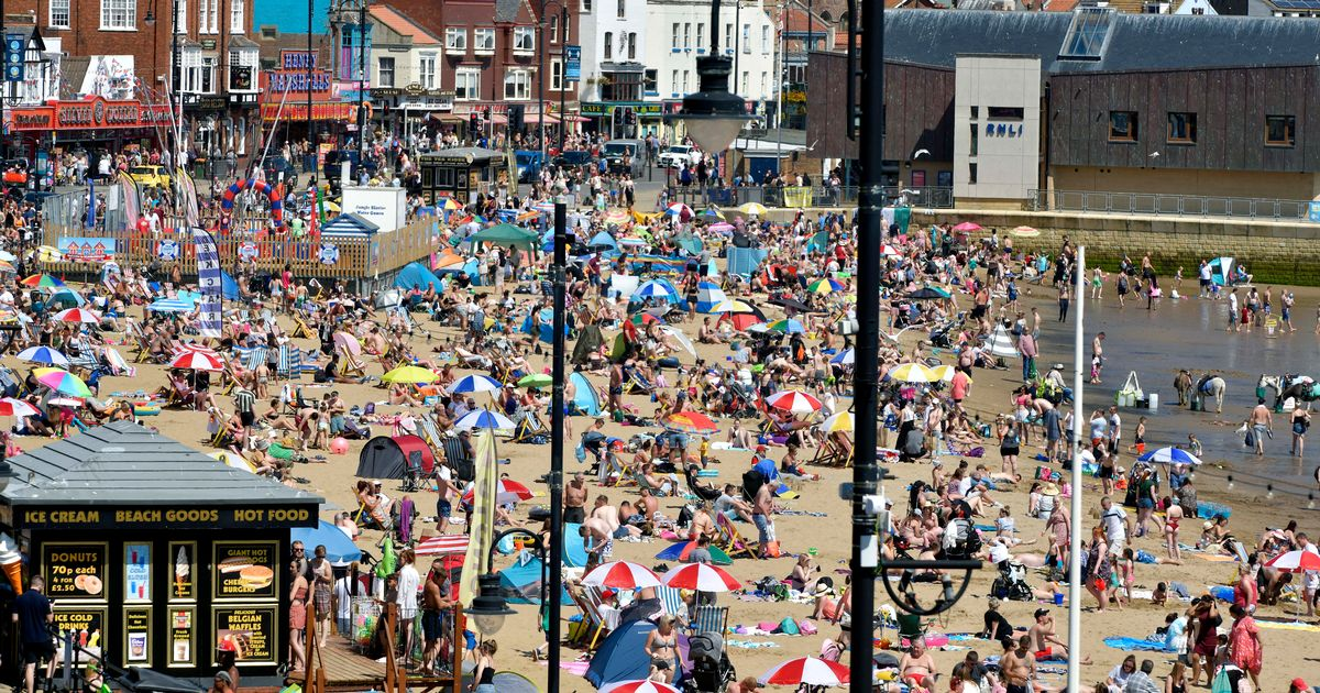 Britain's beaches and parks packed as crowds enjoy the sun