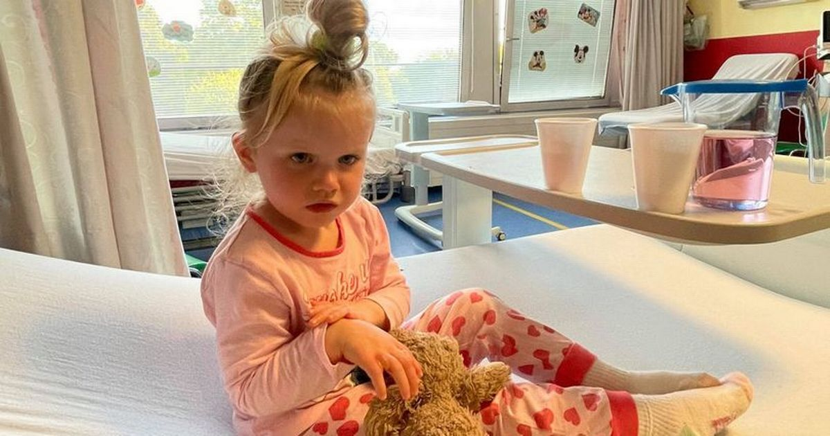 Girl, three, left with burns on hands after picking wrong flowers