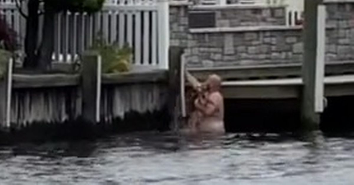 Man hailed a 'hero' as he jumps into river to save baby deer from drowning