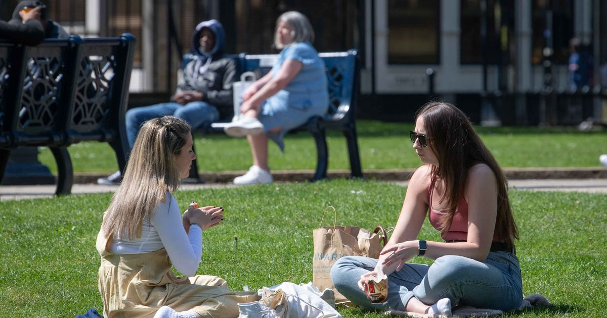 Met Office heatwave update as 'very warm' weather predicted from this date