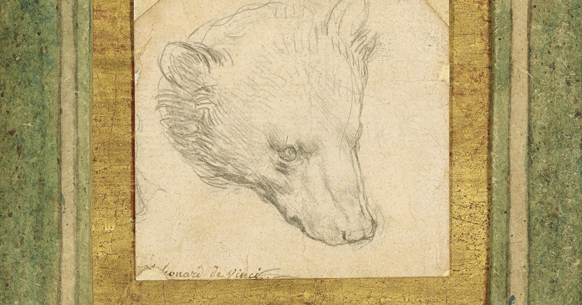 Rare Da Vinci drawing expected to fetch up to $16.5M at auction