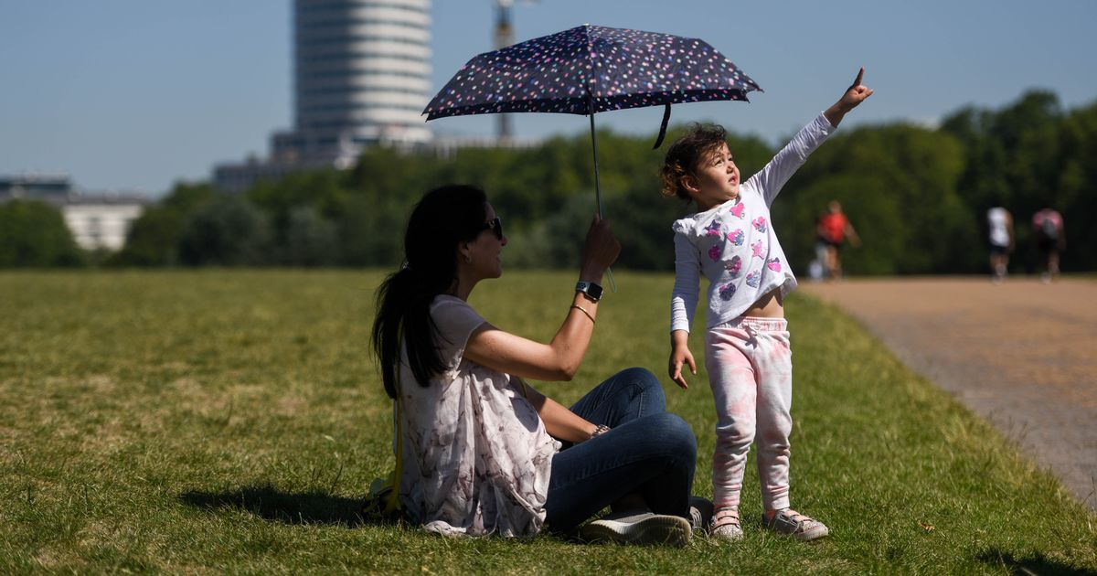 UK could hit temperatures of 40C within ten years, scientists warn