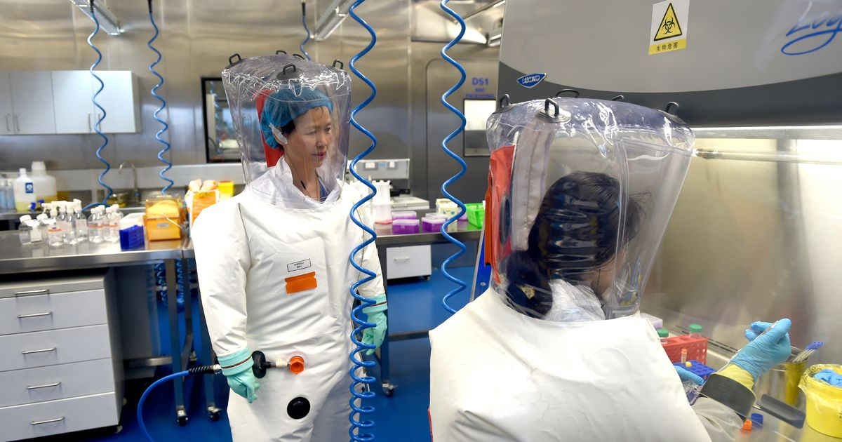 Wuhan scientists could be executed and blamed for Covid lab leak, expert claims