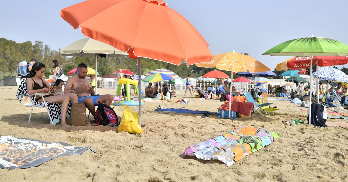 Sicily sweltered in heats reaching 48.77C yesterday