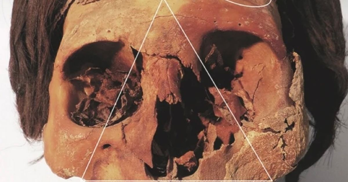 Skeletons of ancient farmers who