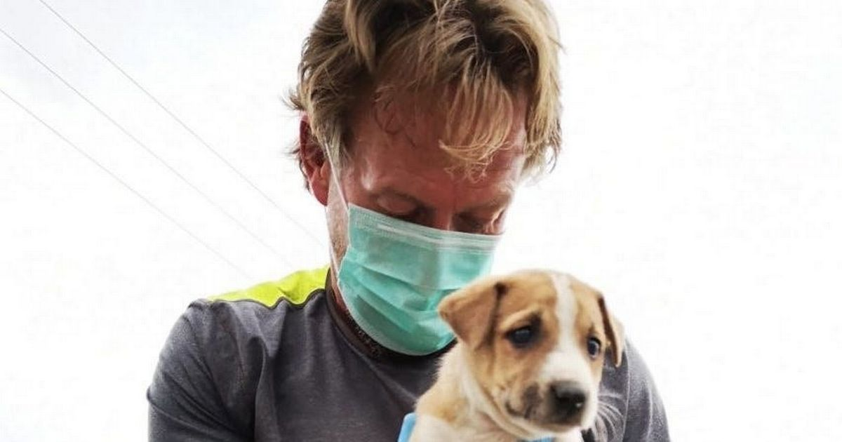 Pen Farthing's animals are evacuated from Kabul but shelter staff left behind