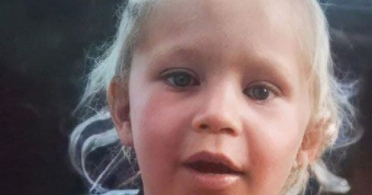 Toddler says 'I'm a princess' as she's rescued from Russian forest after 3 nights alone