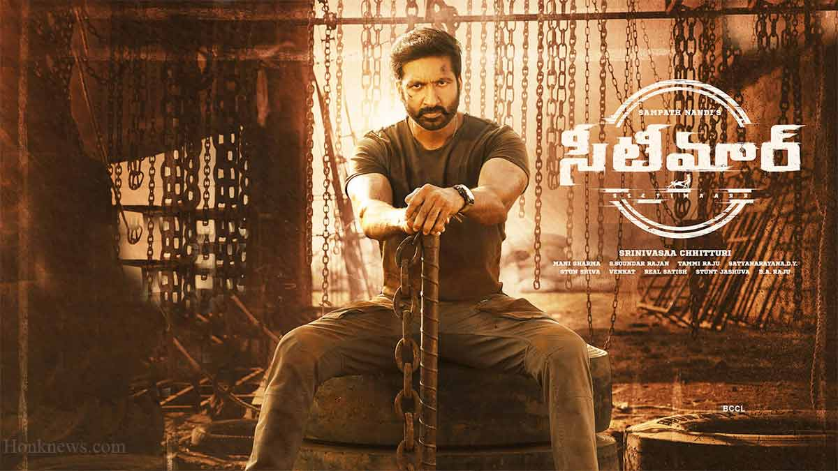 Seetimaarr Movie: Gopichand New Movie Makes His Fans Excited!