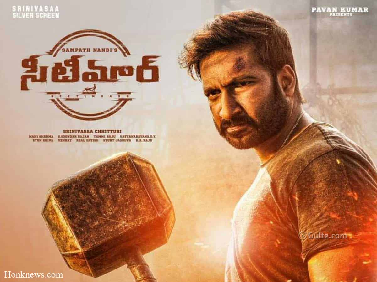 Seetimaarr Review: Finally Mass Action Movie Became A Blockbuster Hit!