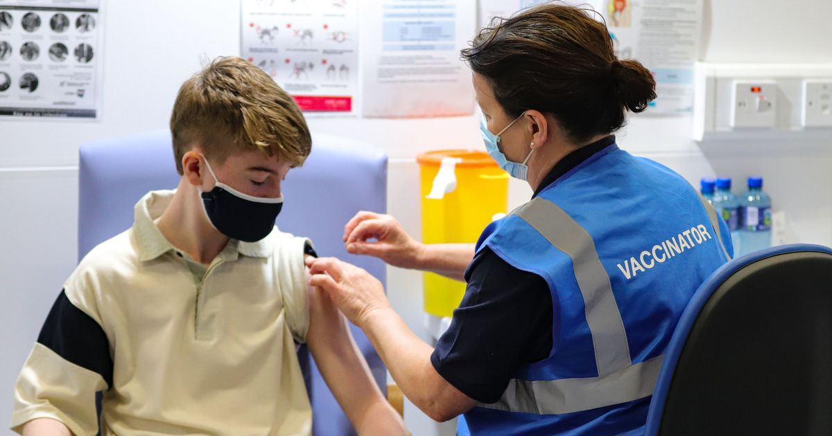 Covid vaccine roll-out for 12-15 year-olds expected to go ahead despite JCVI recommendation
