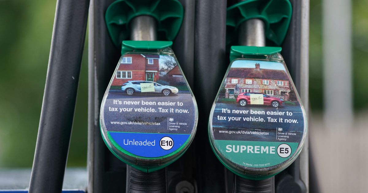 E10 fuel expert shows how drivers can save money as new petrol likely to increase costs